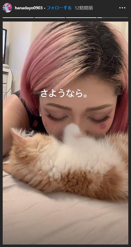 木村花インスタ4